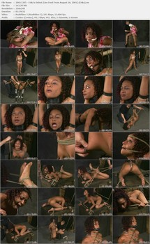 Insex Archives  – Full SiteRip (more 500 movies, 1997-2005) BDSM SITERIPS