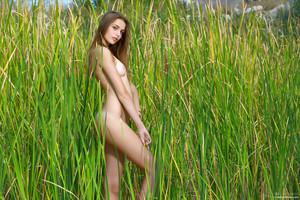 Elle-Hiding-In-The-Grass--y6ta55nms6.jpg
