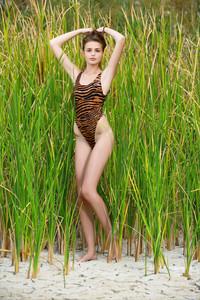Elle-Hiding-In-The-Grass--46ta54a65y.jpg