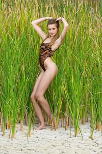 Elle-Hiding-In-The-Grass--76ta53xlvz.jpg